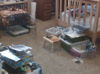 professional house organizer